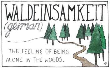 O sentimento de estar sozinho numa floresta e sentir uma conexão com as árvores